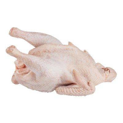 Цыпленок суповой