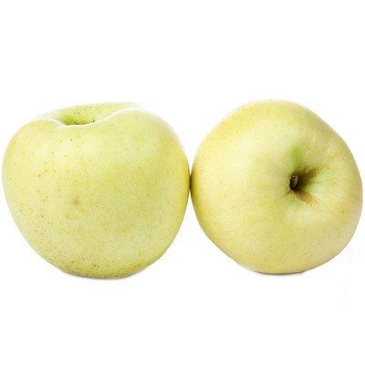 Яблоки «белый налив»