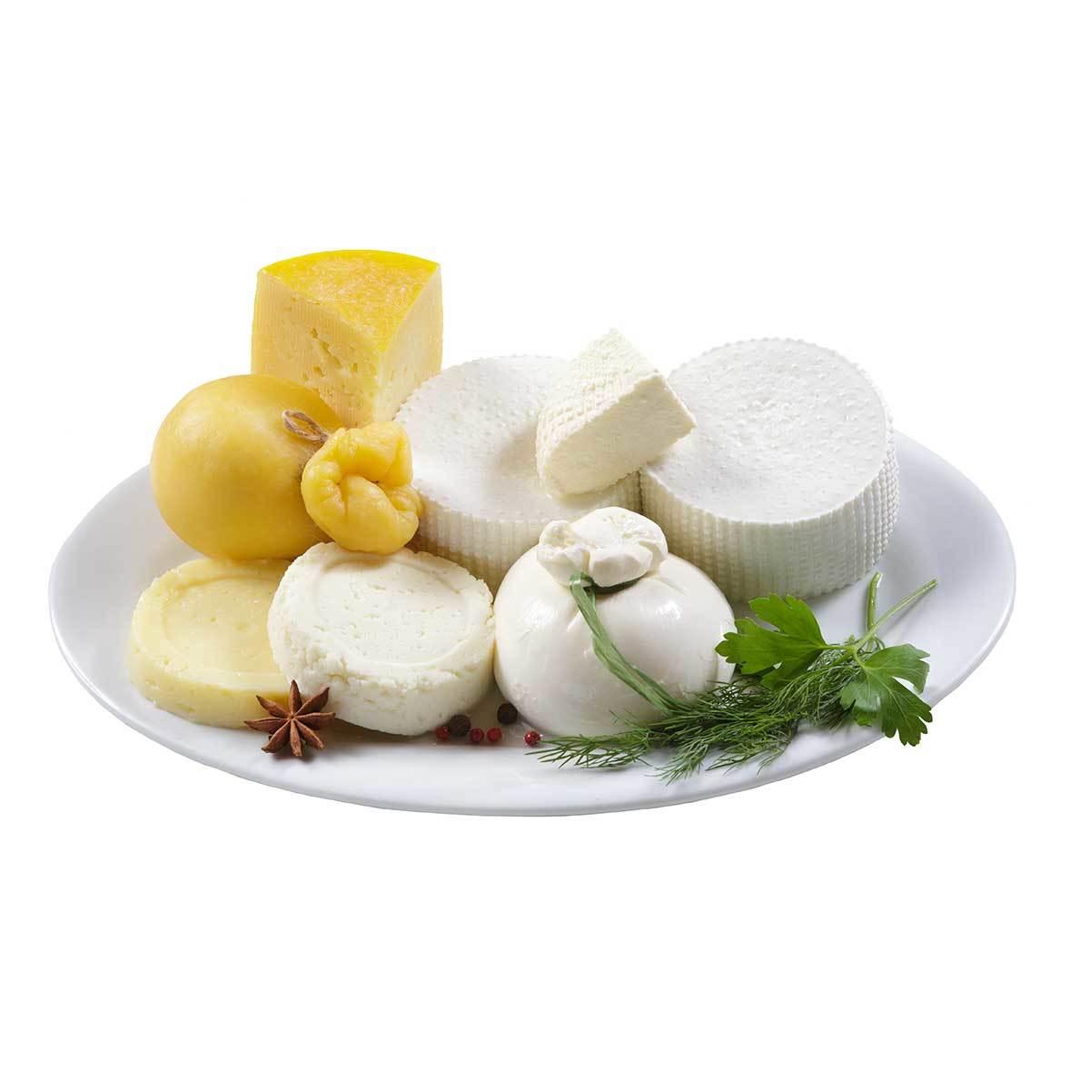 Сырный пробник большой